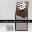 Special Order Award (3D)