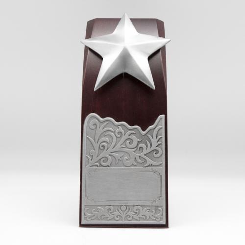 [462] Star Award (S)